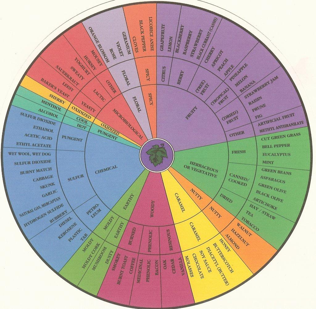 aroma-wheel